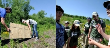 Community Volunteers Explore Turtle Habitat and Volunteer-Built Bird Nesting Structures