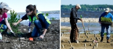 Community Volunteers Help Enhance Onondaga Lake's Southwest Shoreline, Future Home of the Loop the Lake Trail Extension
