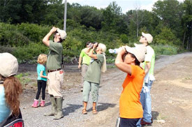 Experts from Montezuma Audubon Center and Onondaga Audubon Society lead volunteers on a birding walk to track native birds.