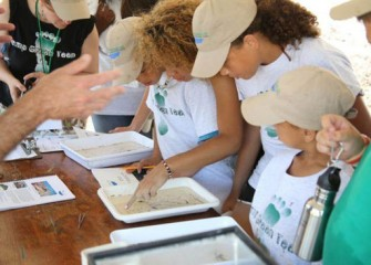 Volunteers examine a variety of organisms collected from nearby Nine Mile Creek