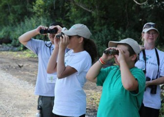 Community members were led on a tour by Audubon volunteers to observe bird species in and around the Geddes Brook wetland