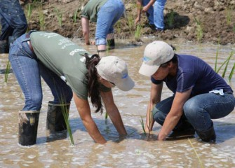 Heather Philip, Geologist, Parsons, teaches Onondaga Lake Conservation Corps members how to plant native aquatic plants.