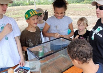 Samples from Nine Mile Creek were placed in a tank to be observed by members of Camp Green Teen.