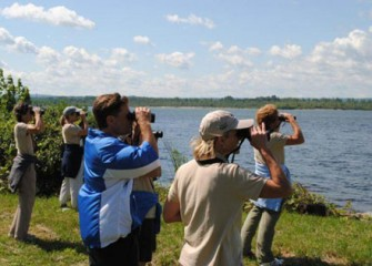 Teachers Observe Native Birds on and Around Onondaga Lake.