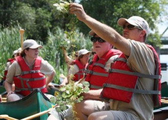 Teachers Examine the Water Chestnuts They Removed from Onondaga Lake.