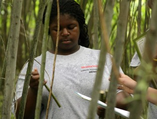Students Get an Up Close View of the Shrub Willow Farm