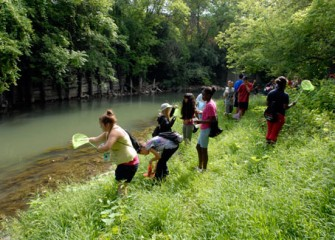 Students Participating in Honeywell Summer Science Week at the MOST Collect Field Samples from Onondaga Creek
