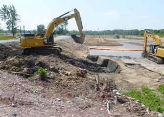Area being restored adjacent to Geddes Brook wetlands, seen in background.