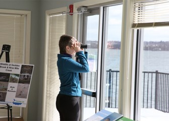 Waterfowl are visible on Onondaga Lake from the Visitors Center.