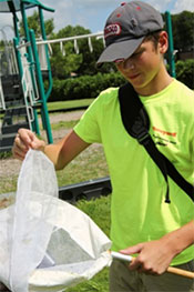 Clark Strang, a Skaneateles Middle School student, uses a net at Munro Park to collect and examine bugs.