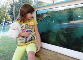 Anna Rose O'Dett, of Fulton, observes Onondaga Lake fish on display at Honeywell Sportsmen's Days.