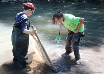 Renee Halloran (right) and Assistant Counselor Grace Gustke, both SUNY-ESF students, use a kick net to capture small fish and other creatures.