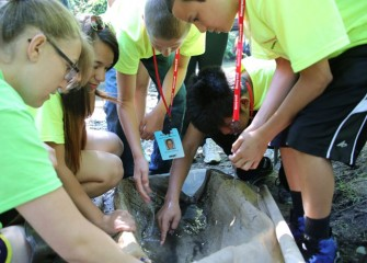 Counselors bring the net to shore for students to identify and count fish and creatures such as mayflies, aquatic worms and freshwater shrimp.