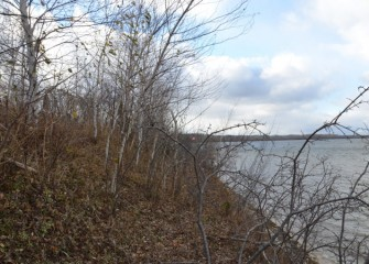 View along the shoreline before construction to build a revetment, or retaining wall.