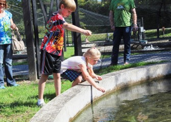 Preston (left) and Camryn Daggett from Cato feed young fish in one of the hatchery tanks.  Visitors to Honeywell Sportsmen's Days at Carpenter's Brook could also view the breeding tanks indoors at the hatchery.
