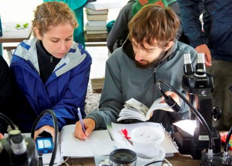 Observations were recorded and species identifications were uploaded to inaturalist.org, a live online tool used to tabulate findings.