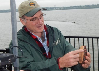 James Gibbs, Ph.D., professor of vertebrate conservation biology at SUNY-ESF, points out colorful markings on an Eastern painted turtle.