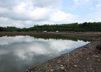 Geddes Brook wetlands soon after construction, when one of the first Corps planting events took place.