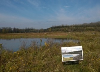 Today Geddes Brook wetlands is a flourishing ecosystem.  Posters were placed during the October 2014 event to remind participants how the wetlands appeared just two years ago.