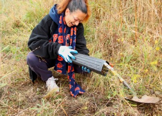 Margaret DeCarlo of Clay loosens a silky willow tree, a native species, from its pot.