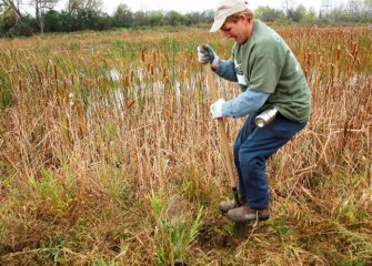 Patrick Higgins of Clay puts his weight behind the effort to plant a new tree in the wetlands.
