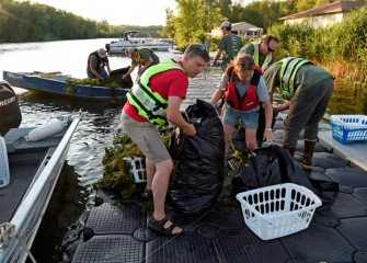 Efforts over the years to remove water chestnut are showing positive results.  The Onondaga Lake Conservation Corps is now joining in these efforts.