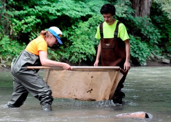 A counselor uses a kick-seine net to capture small fish and macroinvertebrates in Onondaga Creek.  Macroinvertebrates such as crustaceans, worms and aquatic insects are bioindicators of the health of the ecosystem.