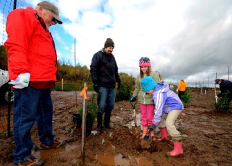 Autumn (right) and twin sister Evelyn Keefe work hard at digging the hole just the right size and depth for a new tree, as their father Nathan and grandfather Larry watch.