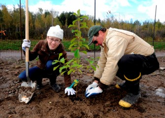 Grace Getman, of Syracuse, works together with Steve Mooney, Managing Scientist at O'Brien & Gere and Corps volunteer, to properly pack soil around a young spicebush (Lindera benzoin) they just planted.