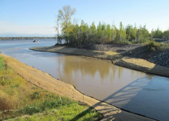 New banks are built along the mouth of Nine Mile Creek, planted, and covered with biodegradable erosion control fabric.