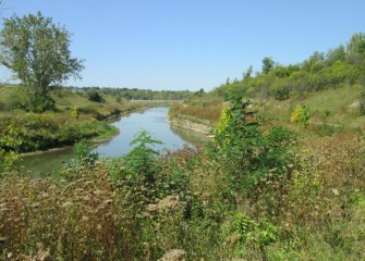 The Nine Mile Creek corridor now thrives with a variety of native plants and trees.