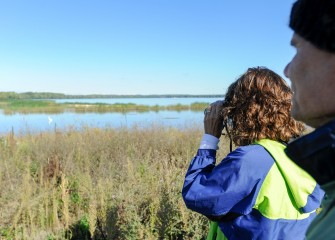 Honeywell Educators Sue Potrikus and Gary Lipp observe a Great Egret in the newly created wetlands near the mouth of Nine Mile Creek.