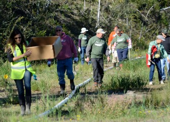 Volunteers fan out along the shoreline to planting areas. Access to the recently restored wetlands is restricted to the public while new plantings become established; the new wetlands can be seen from the lake.
