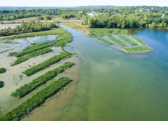 Newly restored areas extend out from the mouth of Nine Mile Creek. Rectangular planting areas serve to reduce the effects of wave action. Over the next few years, vegetation is expected to naturally fill in the entire area.