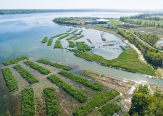Habitat restoration is playing a significant role in creating a sustainable ecosystem in and around Onondaga Lake.