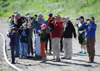 A group heads out to record bird species in the area. With guidance from Onondaga Audubon Society, Corps volunteers identified 29 unique bird species. Many notable species were sighted including Chimney Swift, Veery, and Osprey.