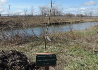 The Association chose the location for the commemorative tree for its proximity to restored wetlands at Nine Mile Creek. The Nine Mile Creek cleanup was completed in 2014.