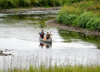 Honeywell's restoration of Nine Mile Creek also included enhancing stream conditions for fish spawning and migration. To date, 21 fish species have been documented in Nine Mile Creek since completion of the work.