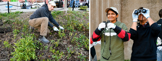 Left: Alex Thor, of Syracuse, plants native species near the Onondaga Creekwalk. Right: Julie Kunnumpurath and Philip Guinto, members of the Binghamton University chapter of Alpha Phi Omega, a national coeducational service organization, identify bird species.