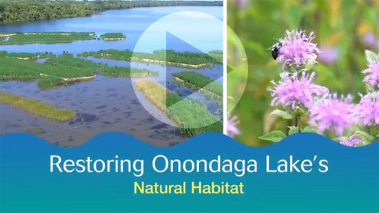 "<a href=""https://www.youtube.com/watch?v=MCNQRDAoWfg"" target=""_blank"">Watch a video to learn about habitat restored as a part of the Onondaga Lake cleanup.</a>"