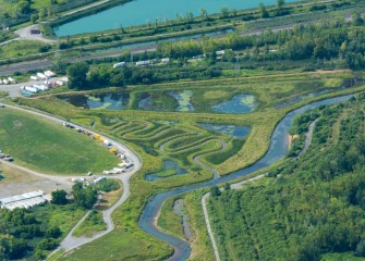 More than 170 species of fish, birds, and other wildlife have been recorded at the restored Geddes Brook wetlands.