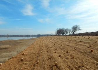 The southwest shoreline of Onondaga Lake before additional plantings this year. Biodegradable erosion control fabric, secured with wooden stakes, protects a native seed mix planted last fall.