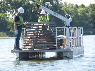 Sixty-two porcupine cribs have been installed in Onondaga Lake. A porcupine crib is a fish habitat structure that provides shelter and feeding opportunities for small fish.