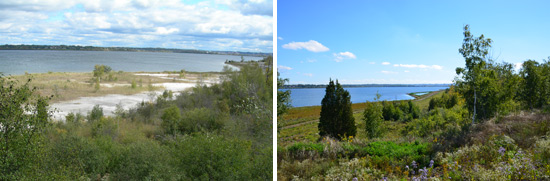 As part of the Onondaga Lake cleanup, Honeywell has restored about 90 acres of wetlands, and about 1.1 million native plants are being planted. The restored wetlands have become home to more than 250 wildlife species.   Onondaga Lake western shoreline before (left) and after (right) the cleanup.