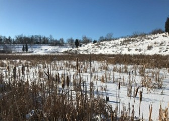 The wetlands are frozen yet beautiful during the coldest part of winter.