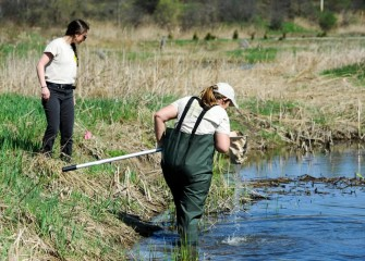 Candace Schermerhorn  (right) of the Young Naturalists Leadership Team uses a D-frame dip net to search for organisms on the bottom while YNLT Project Coordinator Shannon Fabiani looks for amphibians and other species along the water's edge.