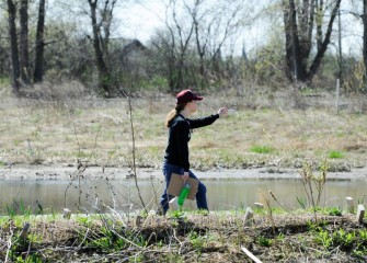 Volunteers log plant and animal species in the newly restored wetlands at Geddes Brook, and at the western and southwest shorelines of Onondaga Lake.