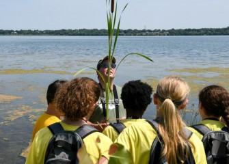 Steve Mooney, a scientist at OBG, shows students a broadleaf cattail, a native plant that grows in stands in wetland and shore areas. Cattails provide food and cover for a diverse array of wildlife.