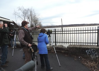 More than 120 unique bird species have now been identified in and around Onondaga Lake, a priority Audubon Important Bird Area.