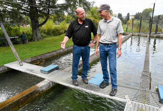 Bill Lansley (left), Onondaga County Parks Commissioner and President of the Onondaga County Federation of Sportsmen's Clubs, gives Honeywell's John McAuliffe a tour of the trout ponds at Carpenter's Brook Fish Hatchery.
